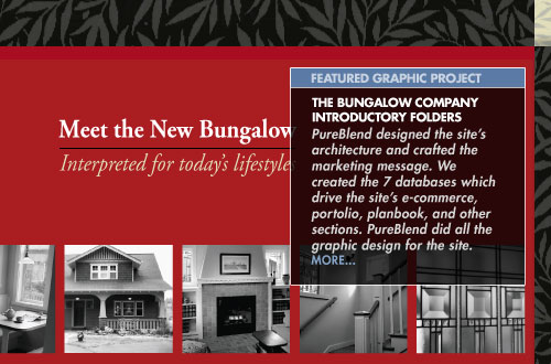 FEATURED GRAPHIC PROJECT: The Bungalow Company Introductory Folders